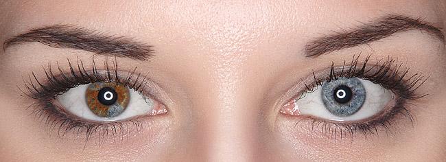 глаза разного цвета