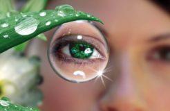 Выбираем капли для улучшения зрения