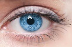Строение оболочек глаза
