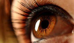 Как наследуются янтарные глаза, биологические и психологические особенности